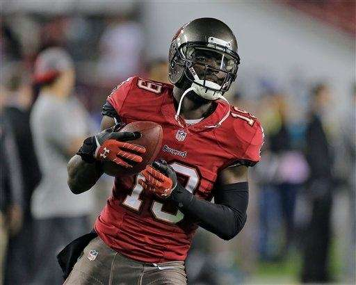 Tampa Bay Buccaneers wide receiver Mike Williams (19)