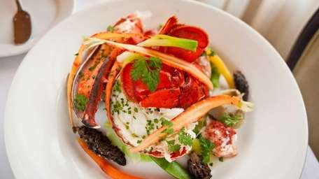 Roasted lobster with creamy morel sauce and English