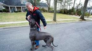 Michael Schaier works with Charlie, a Great Dane