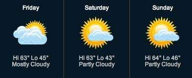 A screengrab of the forecast for the weekend