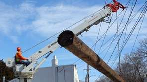 Workers plant a new utility pole at the