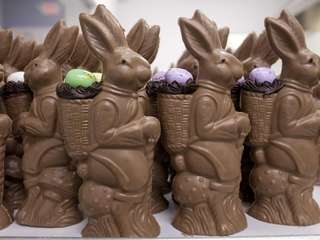 Bon Bons Chocolatier hand crafts molded chocolate bunnies