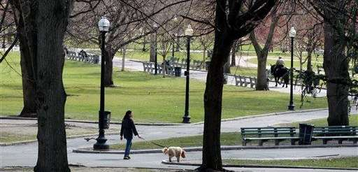 Boston Common park is located in the center