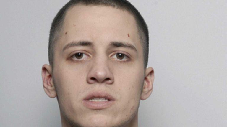 Christopher Loeb, 27, pleaded guilty Jan. 24 to