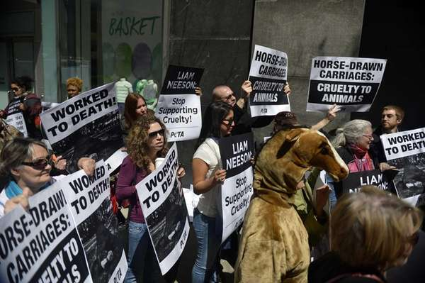 Dozens of animal rights activists protest outside actor