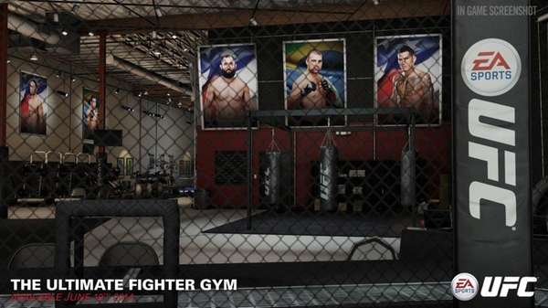 "Screengrab of ""The Ultimate Fighter"" gym from EA"