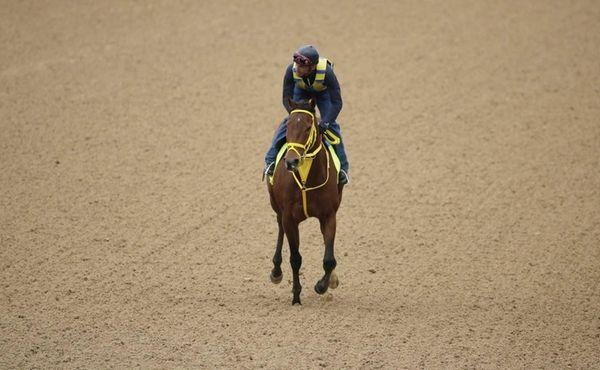 Exercise rider Juan Belmonte takes Kentucky Derby hopeful