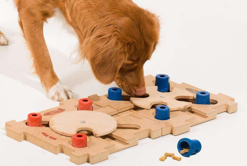 Meant to keep your pet's mind active, the