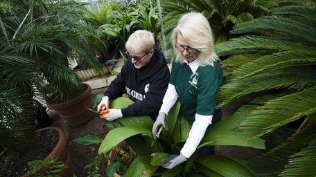 (L-R) Susan Scott, of Islip, and Sue Raeside,