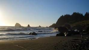 Hidden Beach in Redwood National Park, California, is