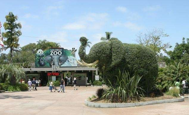 A topiary elephant greets visitors at the entrance