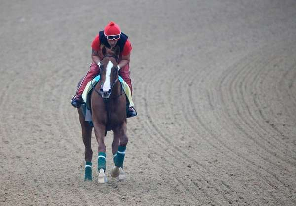 Exercise rider Willie Delgado takes Kentucky Derby winner