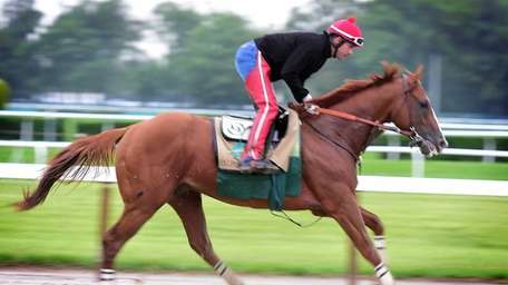 Exercise rider Willie Delgado gallops Kentucky Derby and