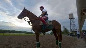 California Chrome, ridden by William Delgado, gets ready