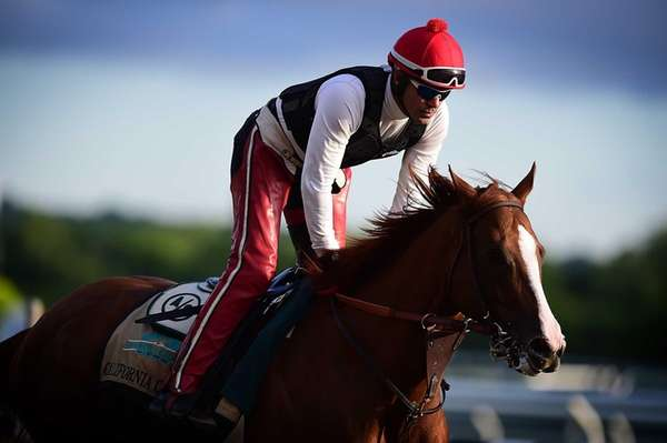 Triple Crown contestant California Chrome gallops around the