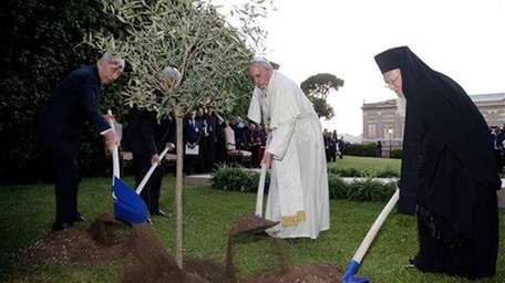 Pope Francis plants an olive tree with Israel's