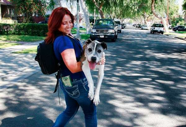 Lori Fusaro carries her senior dog Sunny, an