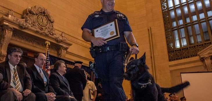 MTA officer Anthony Ferrara, of Lynbrook, walks Mac,
