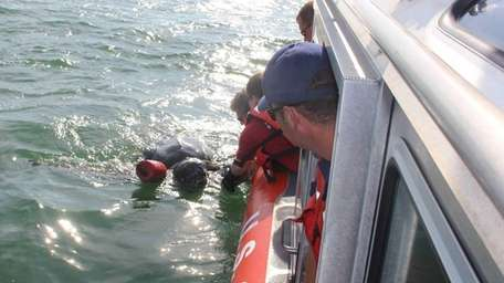 Marine biologists from the Riverhead Foundation for Marine
