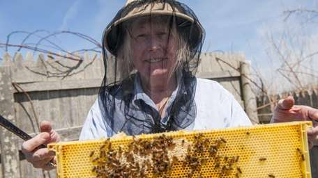 Robin Blackley, owner of East End Apiaries, with