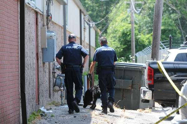 A search dog works with Suffolk County police