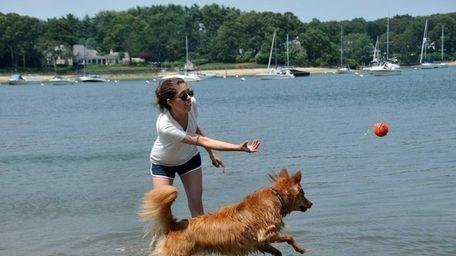 Ashley Newman, 29, of Brooklyn, coaxes her dog