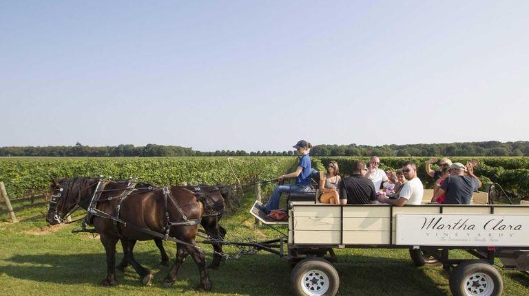 Percheron horses pull a tour wagon driven by