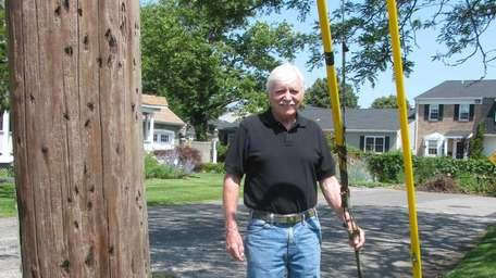 Guy wires that stabilize utility pole next to