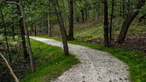 A new wheelchair accessible trail nears completion in