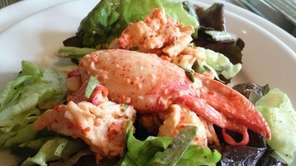 Lobster salad with homemade mayonnaise enriched with lobster