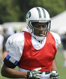 New York Jets wide receiver Shaq Evans (81)