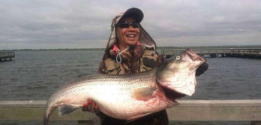 Jin Jun Li shows off a 43-pound striped