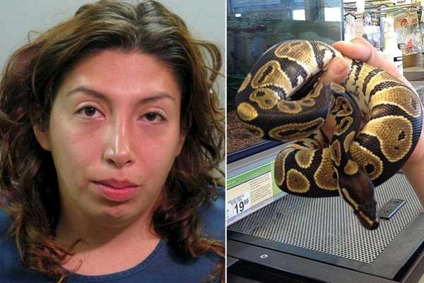 Espinoza with snake