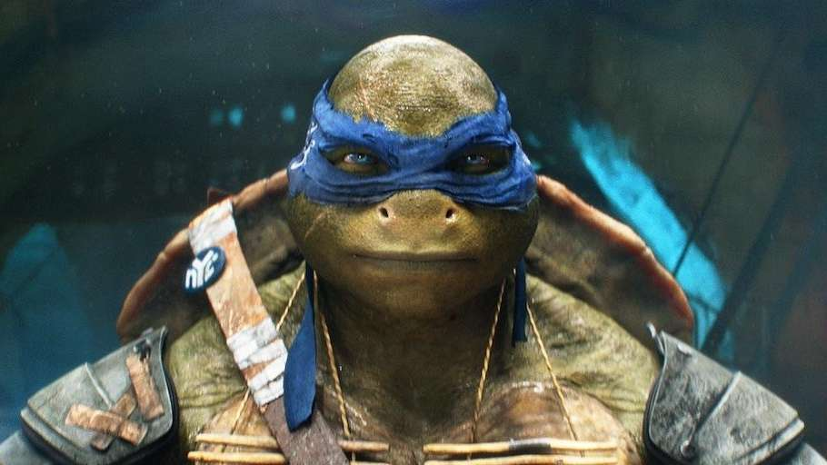 Leonardo in a scene from