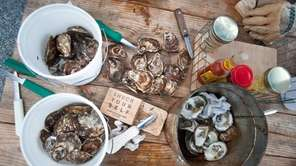 Oysters, knives, protective gloves and hot sauce are