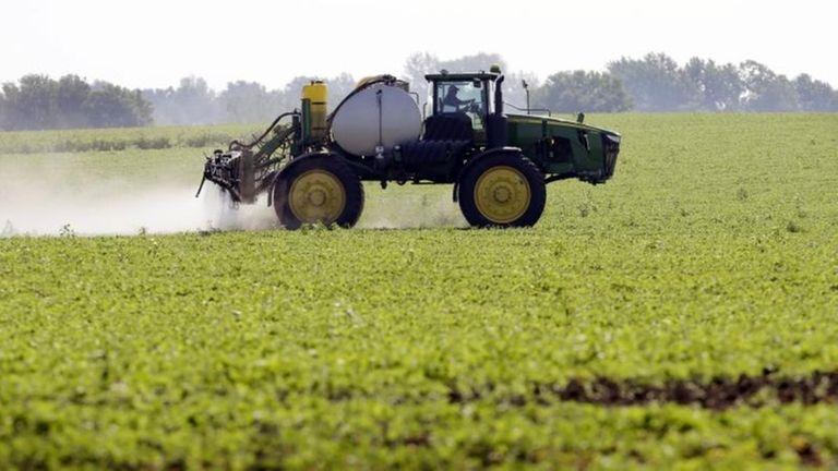 A soybean field in Granger, Iowa, is sprayed
