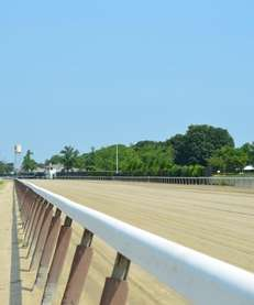 The racing track at Belmont Park.