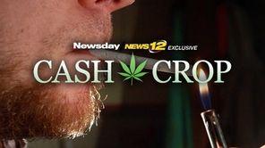 Long Island's multimillion-dollar marijuana industry -- both illegal