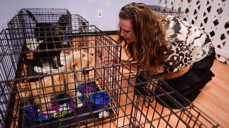Laura Zambito, owner of Precious Pups, a dog