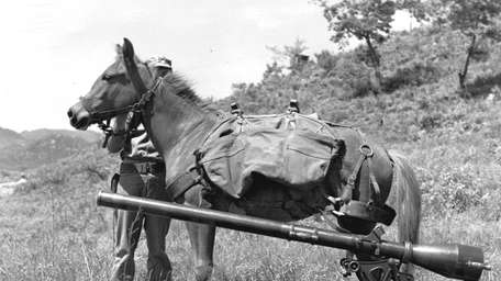 Reckless hauled recoilless rifles and ammunition up steep