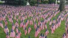 American flags -- 2,977 of them -- have