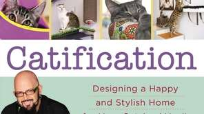 """Catification: Designing a Happy and Stylish Home for"