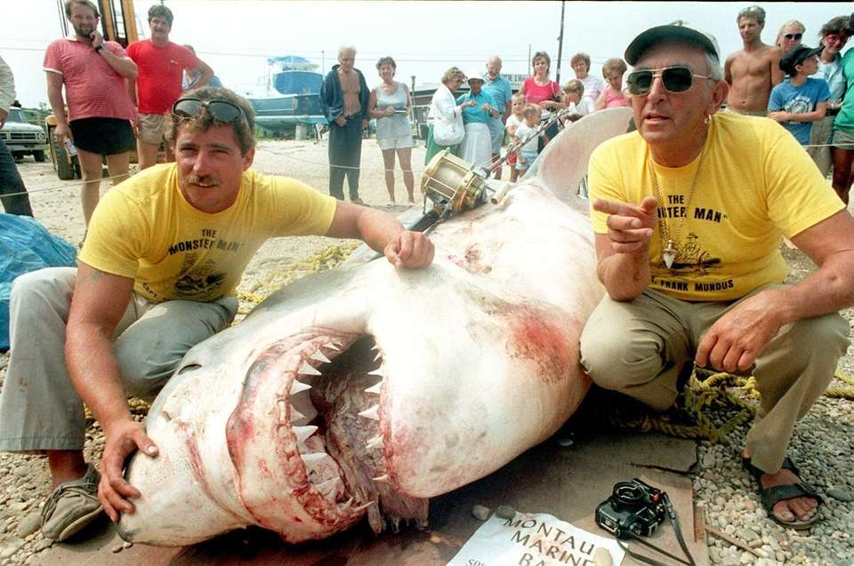 A 3,450-pound great white shark nicknamed