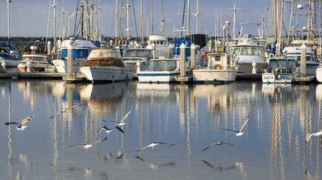 Pillar Point Harbor at Half Moon Bay, the