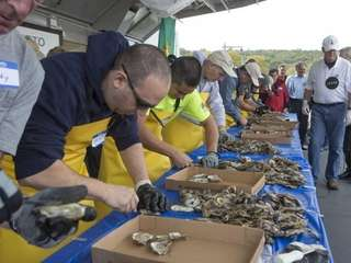 An oyster-shucking contest is one of the highlights