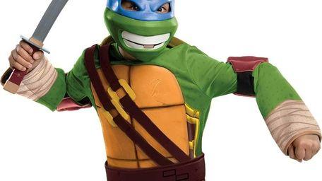 Teenage Mutant Ninja Turtles characters top of this