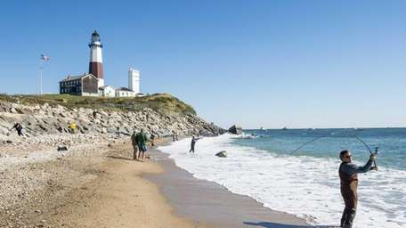 Surf-casters fish for striped bass near the Montauk