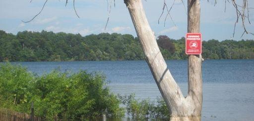 Lake Ronkonkoma.