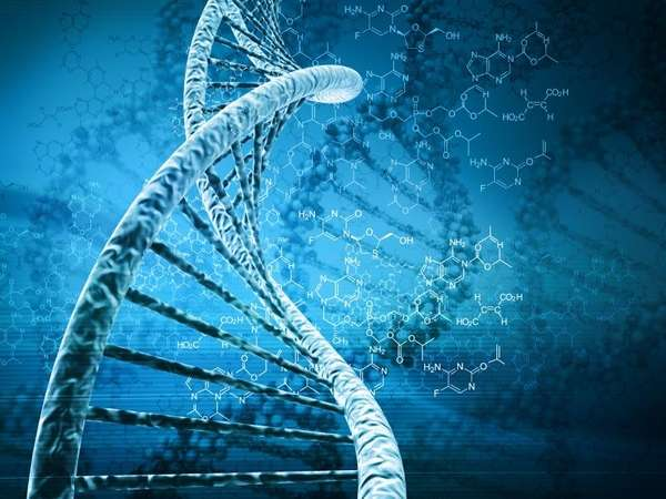 Chromosomes are actually just gigantic DNA molecules, very