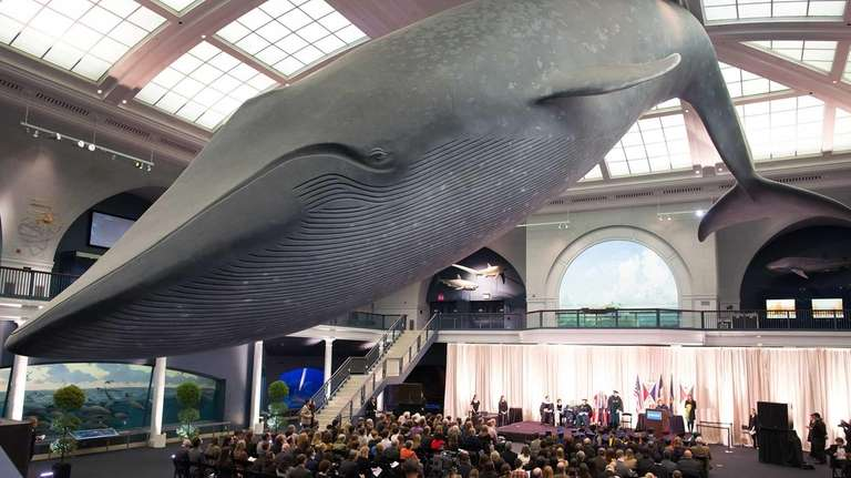 A graduation ceremony at The American Museum of
